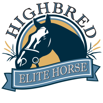 highbred elite horse