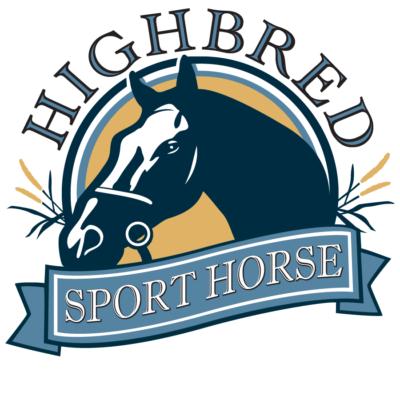 highbred sport horse